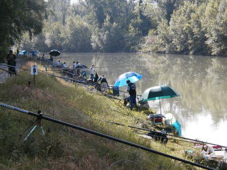 3a prova Campionato di serie C pesca al colpo sul Tevere