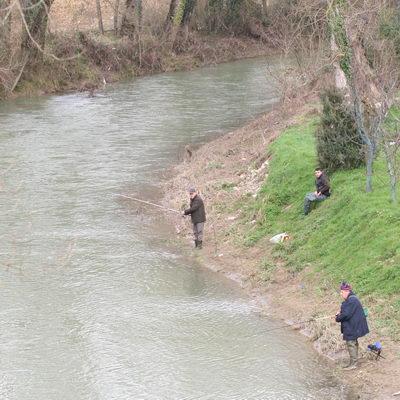 Pesca, rinnovate zone protezione su Paglia e Chiani per riproduzione fauna ittica