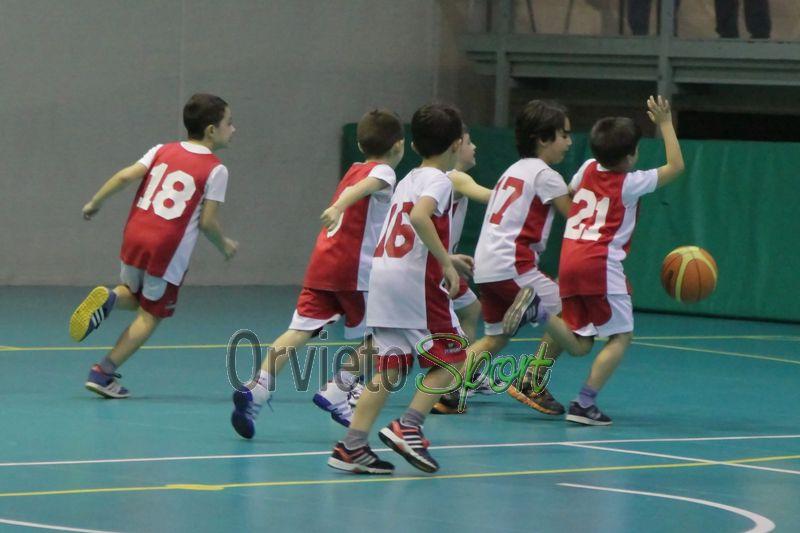Festa MiniBasket 2013 – fotogallery