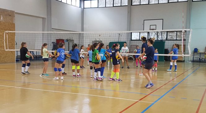 Orvieto Volley Academy, pronto la staff tecnico